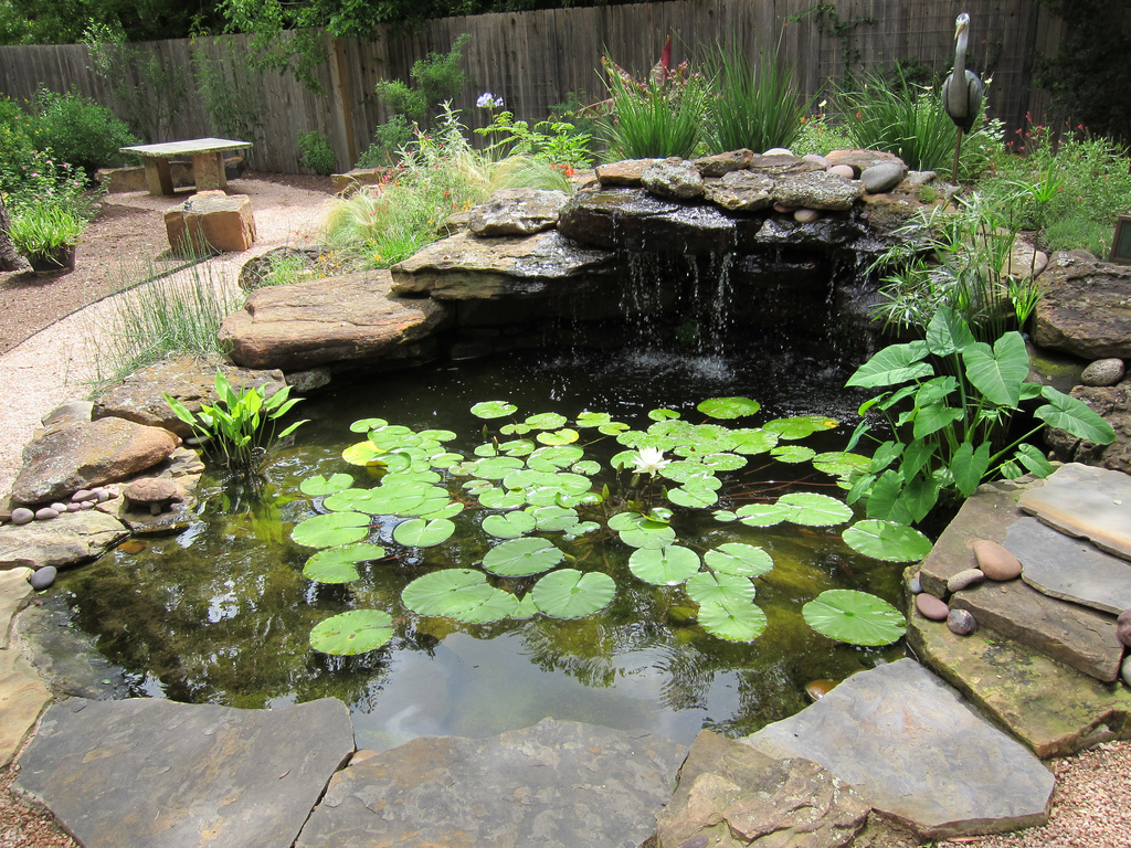 building a pond in your garden